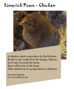 Limerick Poem Chicken