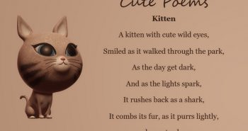 Kitten, Cure Poems