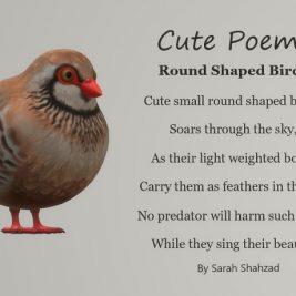 Cute Poem, Round Shaped Birds