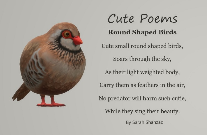 Cute Poem, Round Shaped Birds